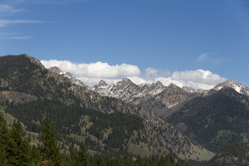 A view of the Sawtooth's from the Lowman side.