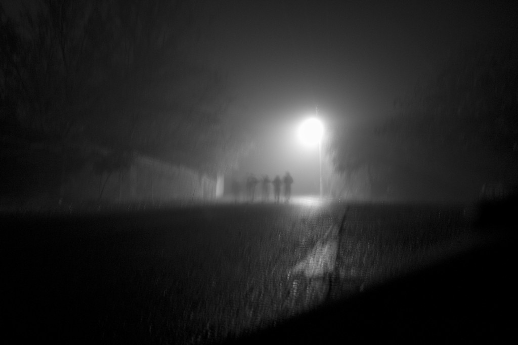 swerving home in the mist.