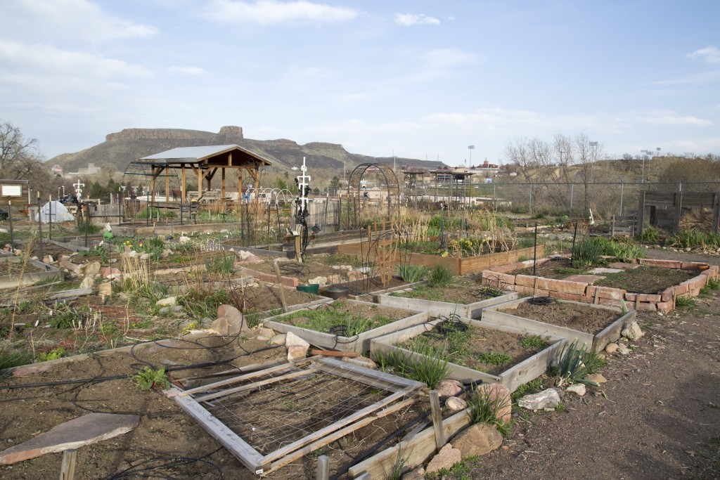 Overview of the Golden Community Garden. Complete with a hive of bees, composting system and tool shed. Garden parties with beer and a fire throughout the summer. Less than 10 min walk.