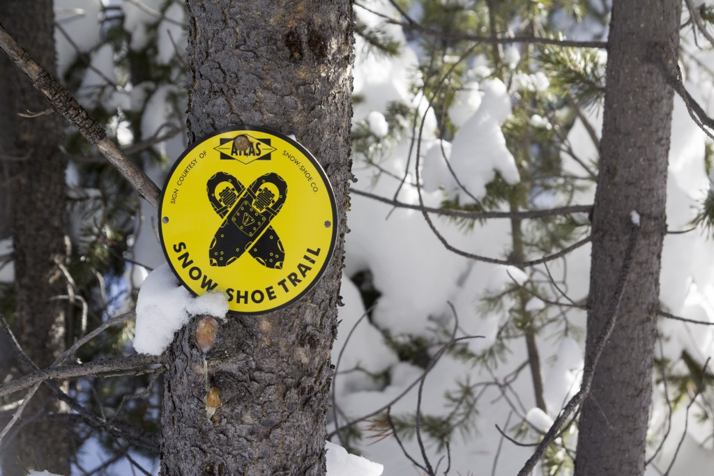 Snowshoe trails near Galena Lodge.